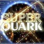 Ai preti piace Super Quark e non sopportano i reality